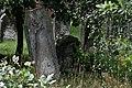 Jewish cemetery Pruszkow IMGP6800.jpg