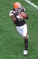 Josh Cribbs catching ball.jpg
