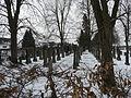 Juedischer Friedhof Freistett 16 fcm.jpg
