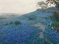 Julian Onderdonk - Blue Bonnet Field, Early Morning, San Antonio Texas (1914).jpg