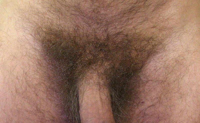 pizda-i-analniy-seks-foto