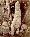 KITLV 87633 - Isidore van Kinsbergen - Sculptures coming from Soekoredjo and Tjitjapar in Kendal - Before 1900.tif