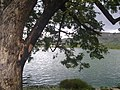 KUMARAGIRI LAKE @ SALEM - panoramio (2).jpg