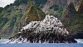 Kamchatka Rock (16808847904).jpg