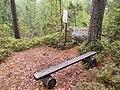 Kanavuori nature trail - bench.jpg
