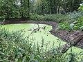 Kasteel Hackfort vijver historisch tuin- en parkaanleg.jpg