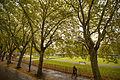Kelvingrove Lawn Bowls Centre Glasgow Scotland 12281737414.jpg