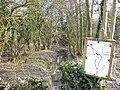 Kingsley Stream - geograph.org.uk - 340569.jpg