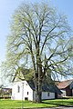 Kirche Frohnhausen (Battenberg) 04.jpg