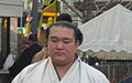 Kisenosato.JPG