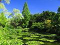Kitagawa Monet Marmottan Water garden 1.jpg