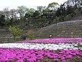 Kodamacho Kodaira, Honjo, Saitama Prefecture 367-0214, Japan - panoramio.jpg