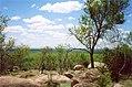 Kruger View (213524722).jpg