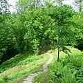 Krusta kalns - pilskalns 03.jpg