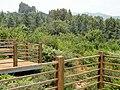 Kunming Botanical Garden - DSC03174.JPG