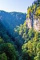 Kurdzhips gorge - panoramio (1).jpg