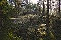 Kylmäkorvenkallion pronssikautinen hautaröykkiö 05.jpg