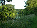 LSG Rurtal noerdlich der Autobahn A 44 An der Rurdorfer Brücke 2 DE-NW.jpg