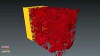 File:LSM-YSZ SOFC Composite Cathode Reconstruction (FIB-SEM).webm