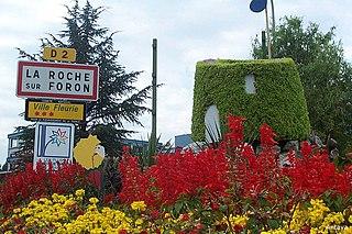 La Roche-sur-Foron Commune in Auvergne-Rhône-Alpes, France