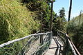 La Palma - Breña Alta - Calle la Cuesta - Maroparque 12 ies.jpg
