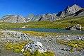 Lac du Col de la Vanoise.jpg