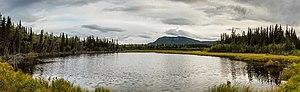 Lago Pippin, Copper Center, Alaska, Estados Unidos, 2017-08-22, DD 115-118 PAN.jpg