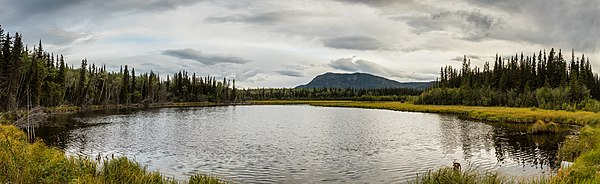 Landscape in Glennallen, Alaska, United States