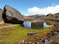 Lagunas y montañas del parque nacional general juan pablo peñaloza paramo batallon 14.jpg