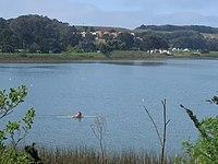 Lake Merced at SFSU.jpg