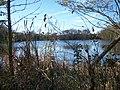 Lambert Lake - panoramio (17).jpg
