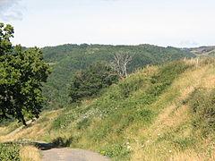 Landscape-IMG 7125.JPG