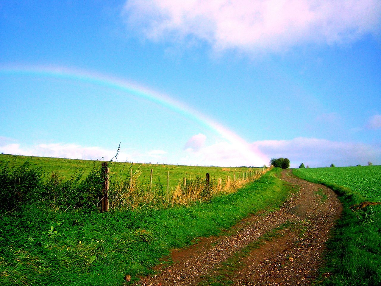 File:Landscape with rainbow on the road between Heimbach and Nideggen.jpg
