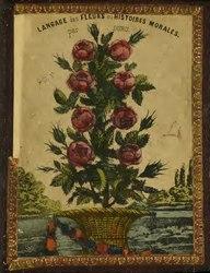 Langage des fleurs, ou, Histoires morales