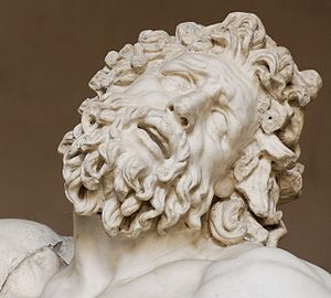Laocoön and His Sons - Laocoön's head