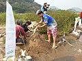 Laos-10-093 (8685832963).jpg