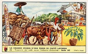 Advertising for Lavazza, transport of coffee in Indochina, circa 1900