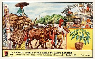 Lavazza - Advertising for Lavazza: Transport of coffee in Indochina