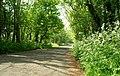 Lay-by near Ballybogey - geograph.org.uk - 813404.jpg