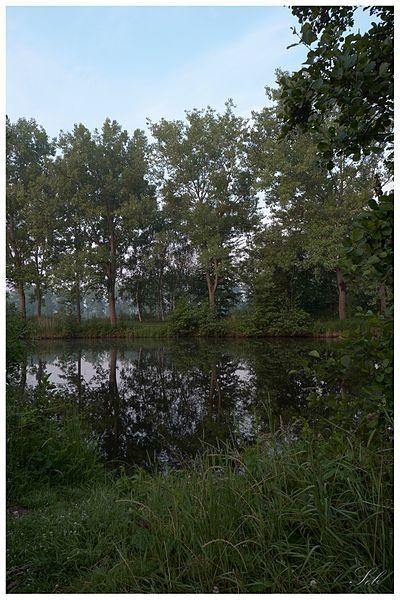 Les étangs de la Carache