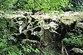 Les Clées Gorges de l'Orbe 1.jpg