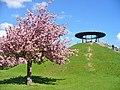 Lilienthal-Park - Fliegeberg (Airman's Hill) - geo.hlipp.de - 36267.jpg
