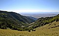 Lincoln National Forest 7.jpg