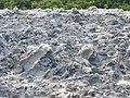 Lipad Mud Volcano (14839688237).jpg