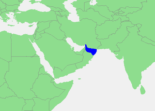 Gulf of Oman A marginal sea of the northern Indian Ocean between the Arabian Peninsula and India