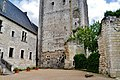 Loches Cité Royale Donjon 7.jpg