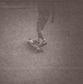 Longboarder Trocadéro 3.jpg