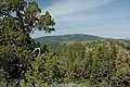 Looking West from Fall Mountain Lookout-Malheur (23849266561).jpg