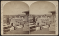 Looking south-west from Bell Tower, Binghamton, N.Y, by Walker, L. E., 1826-1916.png