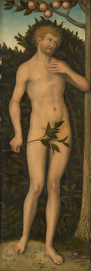 Adam - Adam Lucas Cranach the Elder